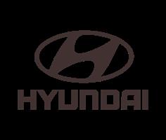 Автомобильные 3D коврики Hyundai