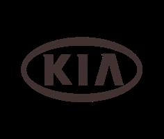 Автомобильные 3D коврики KIA