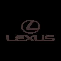 Автомобильные 3D коврики Lexus